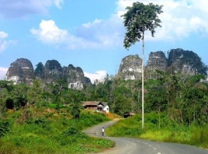 cantungkarst, Borneo Trips