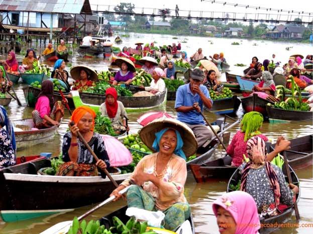 Orangutan & Floating Market