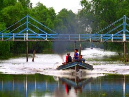Orangutan Island & River Trip