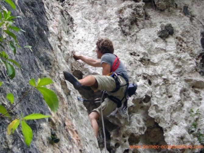 Borneo Jungle Trek & Rock Climbing