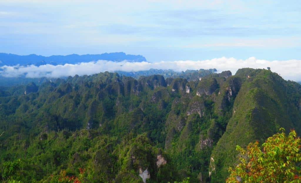 Borneo Ancient Karst & Orangutan Tours