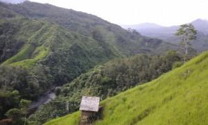 Borneo Jungle Trekking
