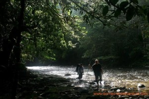 cborne, Mahakam River Tour, Borneo River Tour