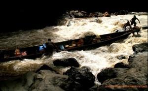 cross borneo boating, Borneo white river rafting, Orangutan trip guide