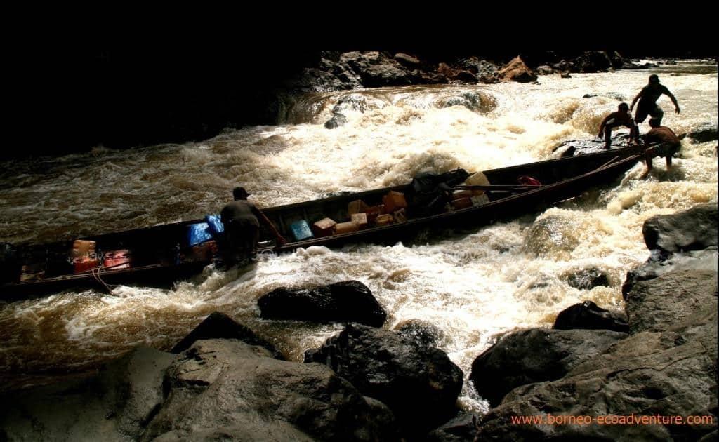Cross Borneo and Orangutan Adventure II