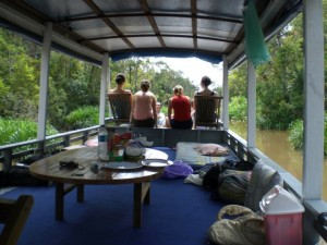 Houseboat to tanjung puting national park (camp leakey orangutan tours)