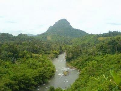 Loksado Gunung Kantawan, Bamboo Rafting Dayak, River Tour