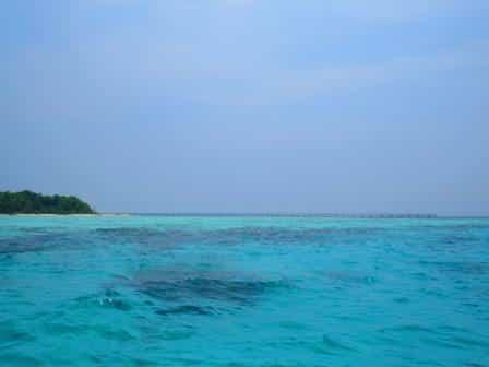 Sanglaki Island, Derawan island Tour