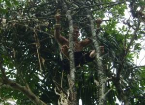 upau village, Dayak Deah, explore borneo, Borneo White River Rafting