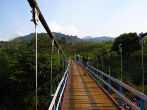 riam kanan trek, Trekking Borneo Jungle
