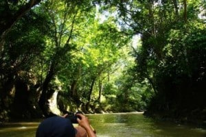 borneo jungle river