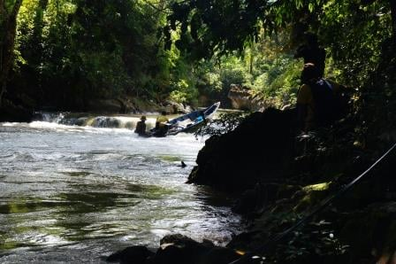 Borneo Jungle River I