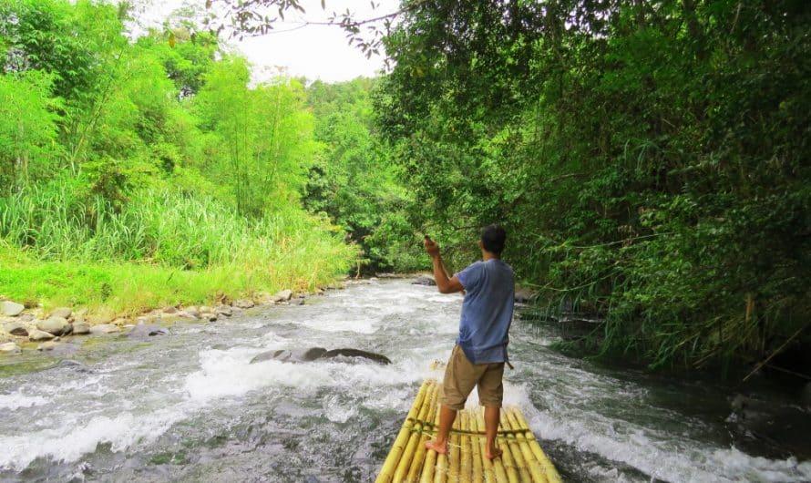 Bamboo Rafting & Orangutan Island